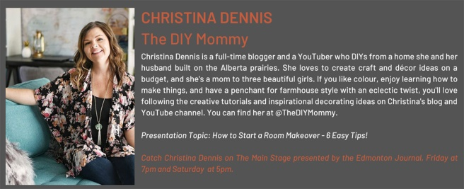 Christina Dennis - Edmonton Renovation Show - Social Media Edmonton 2